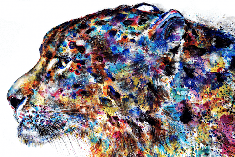 emily-tan-animal-illustration-4