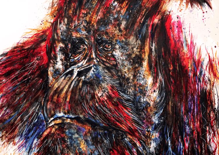 emily-tan-animal-illustration-6